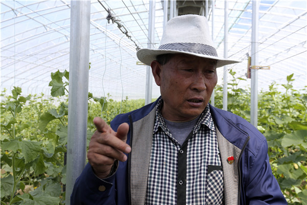 Couple sow seeds of success in Tibet county
