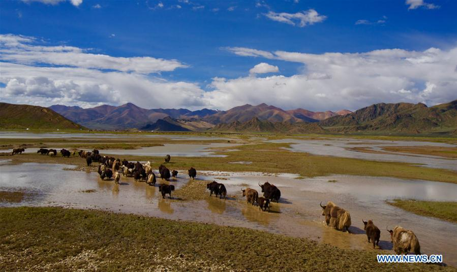 CHINA-TIBET-YARLUNG ZANGBO RIVER-SOURCE-PROTECTION (CN)